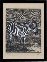 Zebre(シマウマ)